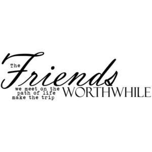 The Friends We Meet